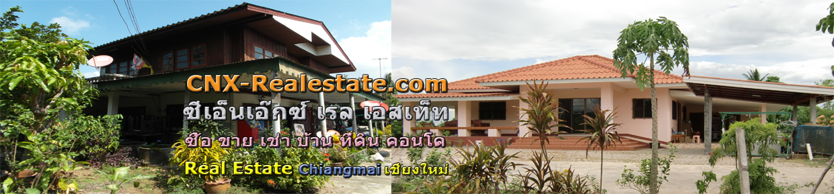 cnx-realestate.com